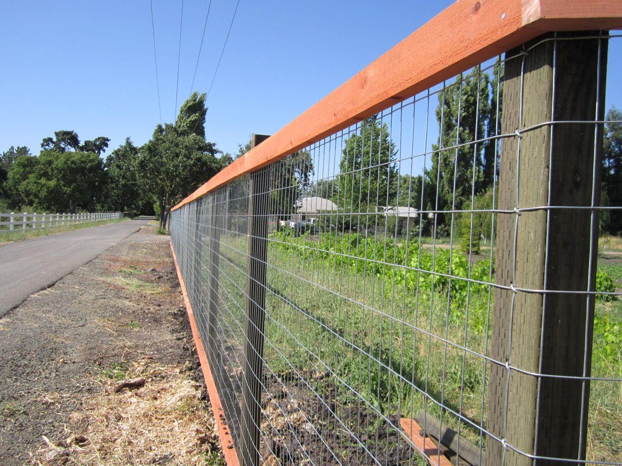 008-2.jpg 1,280×960 pixels | Fence, Wire fence, Welded ...