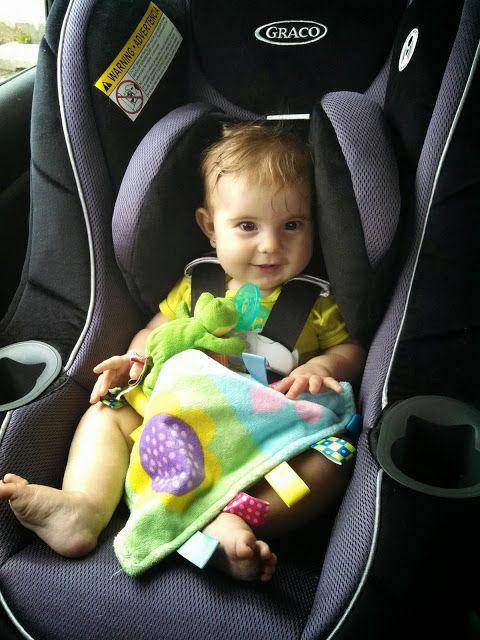 Froggied Princess: Our life with a Wheaton-Pavlik Harness: My Car ...