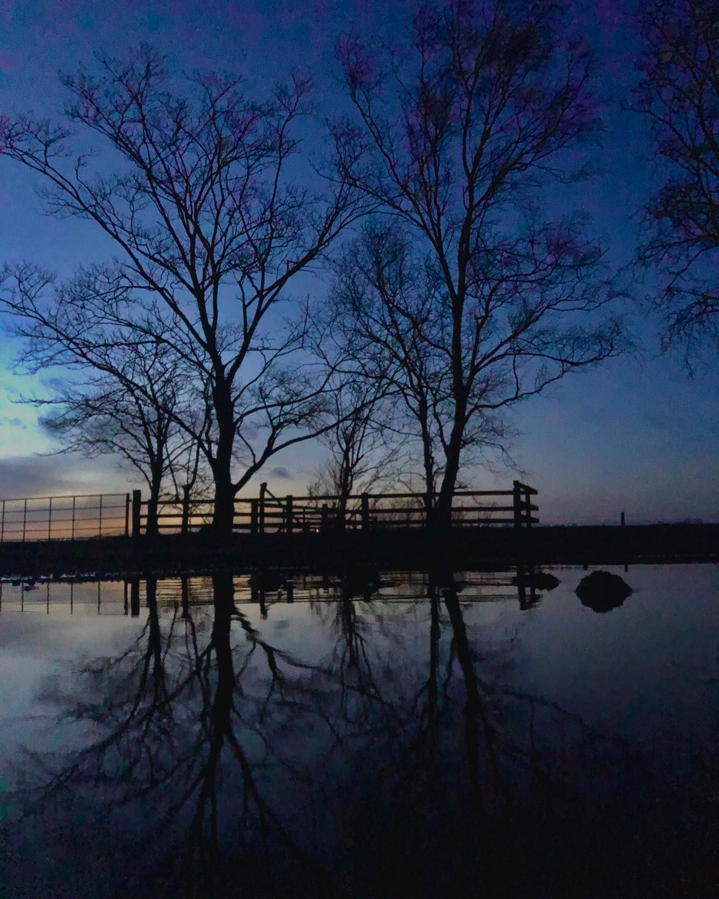 Some times when things arent going your way it's good so sit back and refelct on all the good times and good people in your life. Look for the positive, it's always there if you look hard enough :) . . Camera: iPhone 8 . . #photography #photo #photooftheday #photographer #trees #reflection #tree #reflectionphotography #reflective #dusk #evening #spring #meloncholy #positivevibes #positive #positiveenergy #lookingforward #iphone8 #applephotography #calm #calming #still #explorenorthumberland