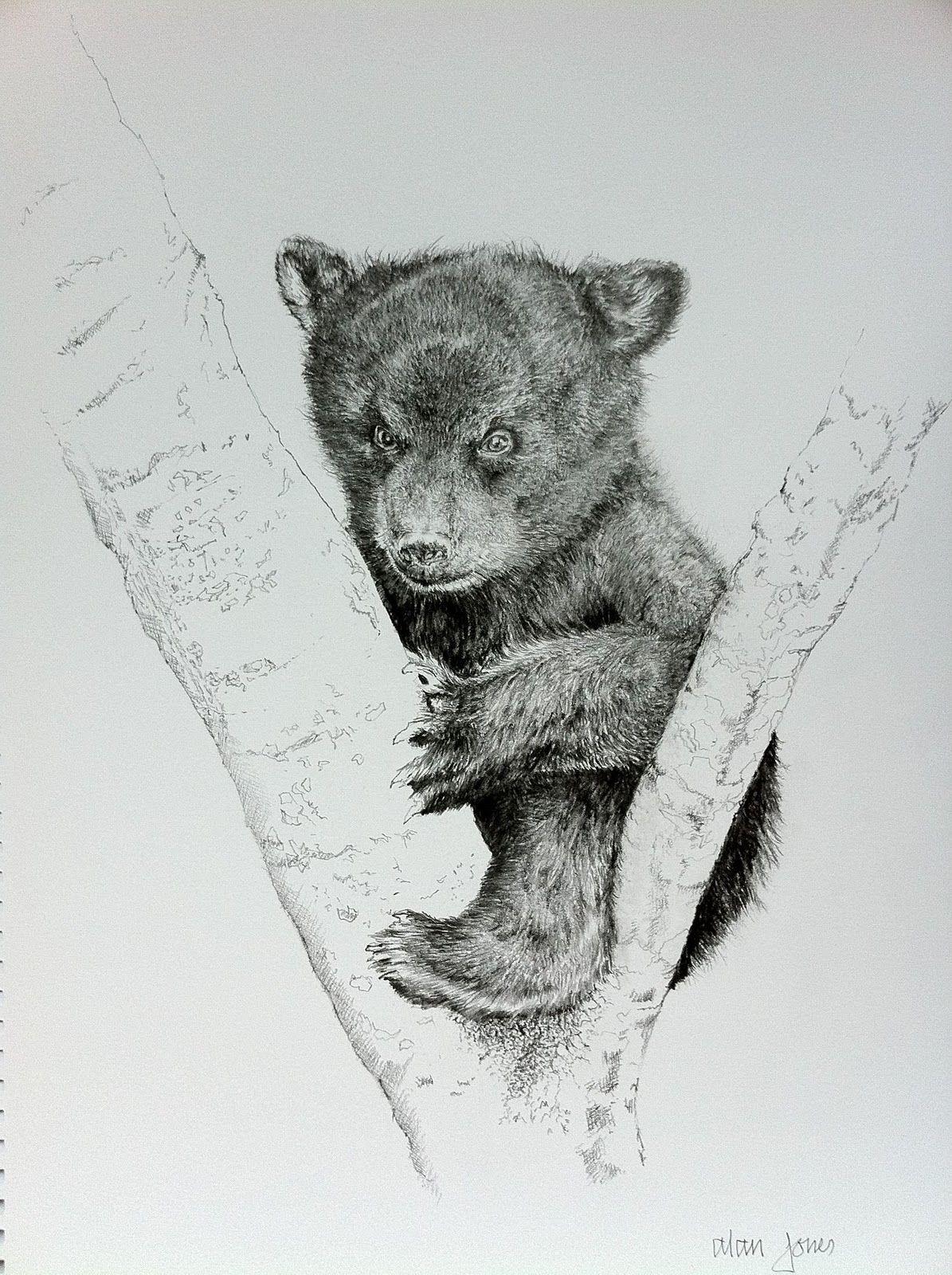 Sketching bear cubs bear cub sketch tattoos pinterest for Bear cub tattoo
