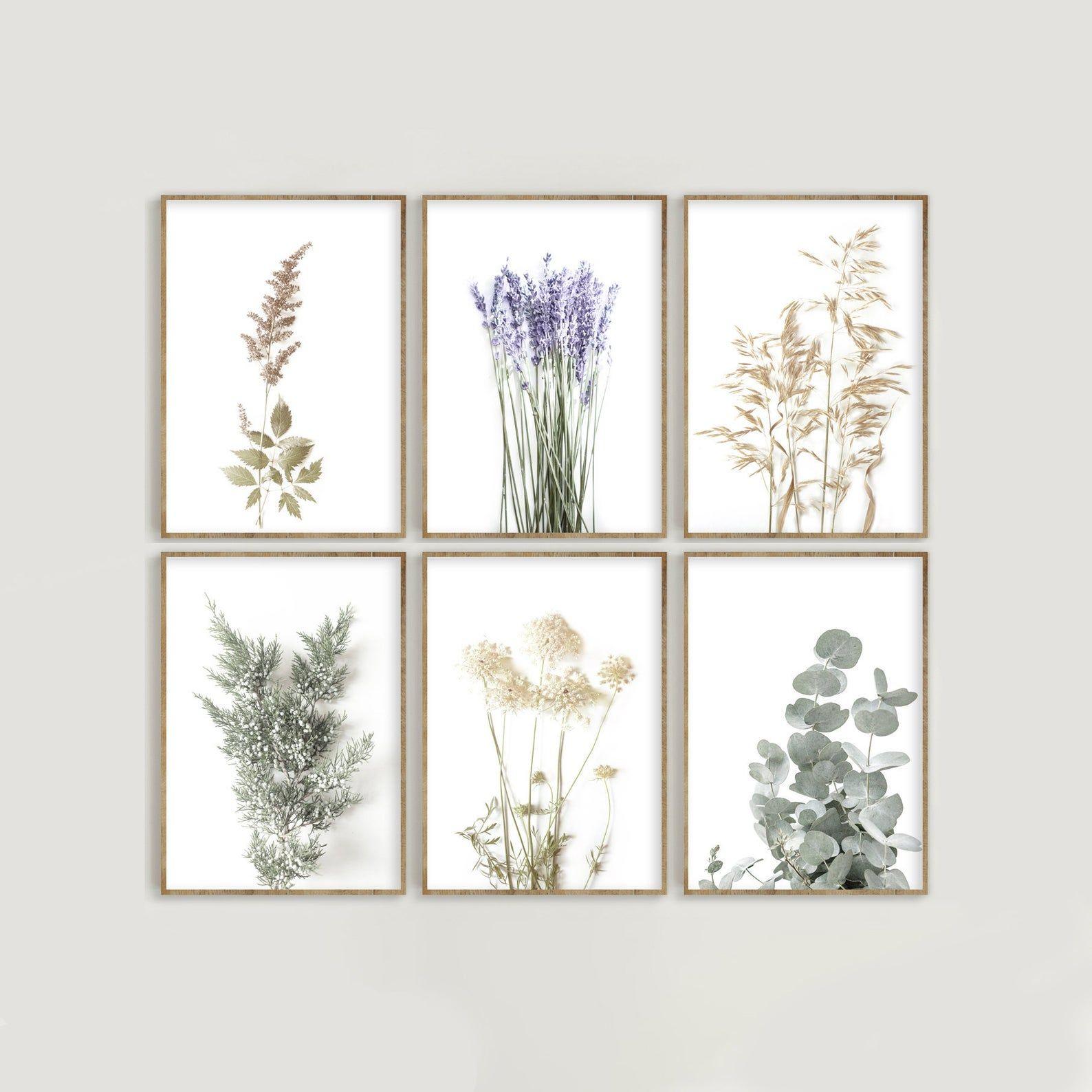 Botanical Print Set Of 6 Wild Flowers Prints Farmhouse Etsy Botanical Print Set Wall Decor Printables Framed Botanical Prints
