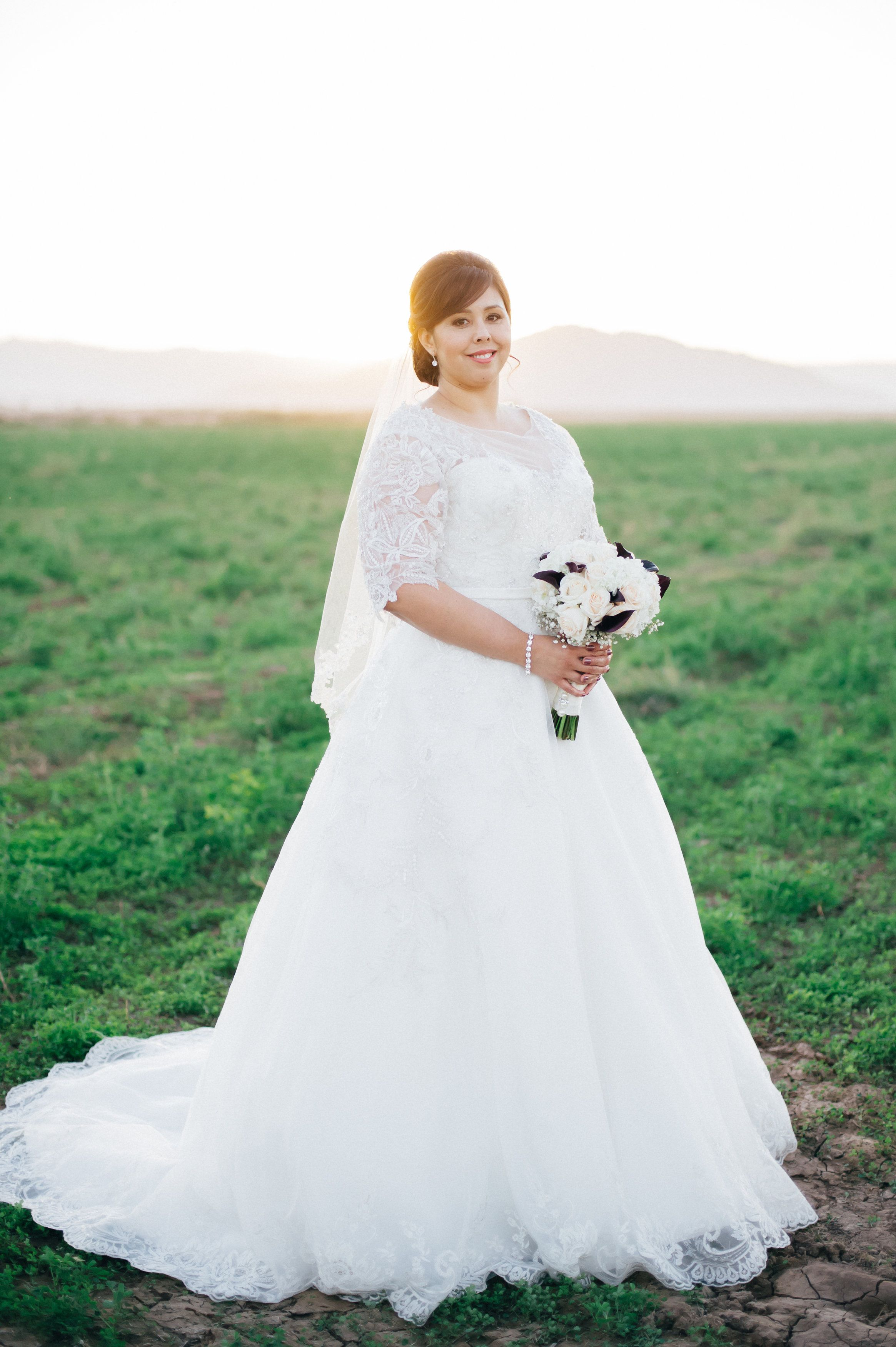 Affordable Custom Plus Size Wedding Gowns From The Usa Plus Size Wedding Gowns Designer Wedding Dresses Plus Size Wedding