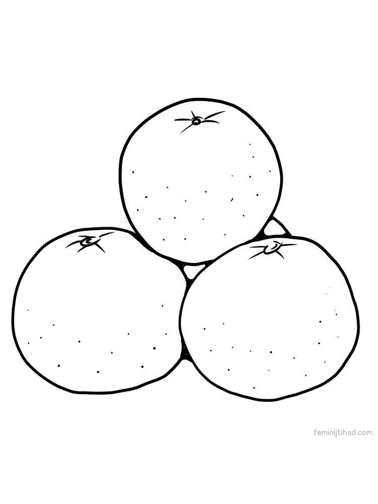 Orange Images To Print Orange Is One Of The Most Popular Fruits In The World Oranges Can Almost B Fruit Coloring Pages Coloring Pages To Print Coloring Pages