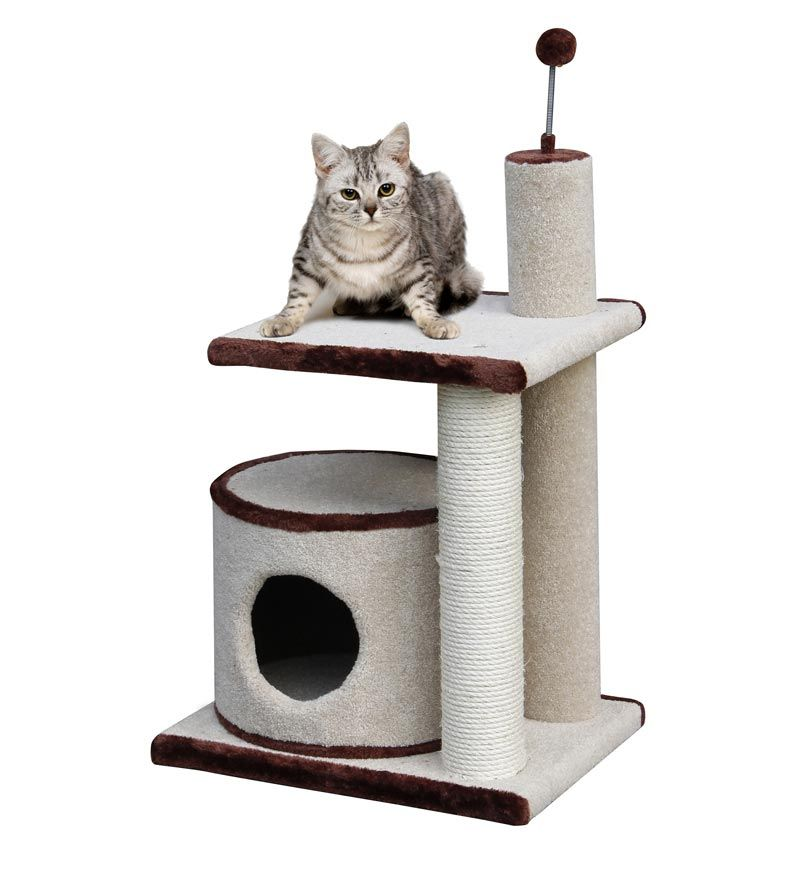 Cat 2 Level Scratching Post And Oval Kitty Condo With Sisal Fibers Cat Tree From Plow Hearth 79 95 Cat Condo Pet Furniture Covers Cleaning Kitty Litter