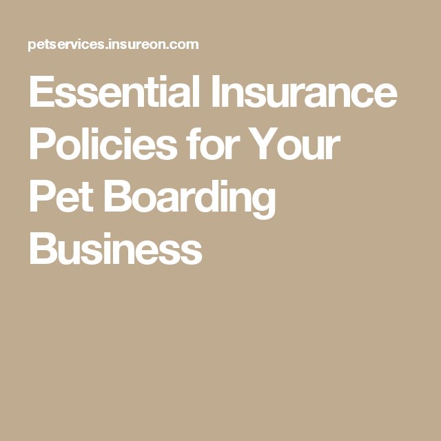 Essential Insurance Policies For Your Pet Boarding Business Pet