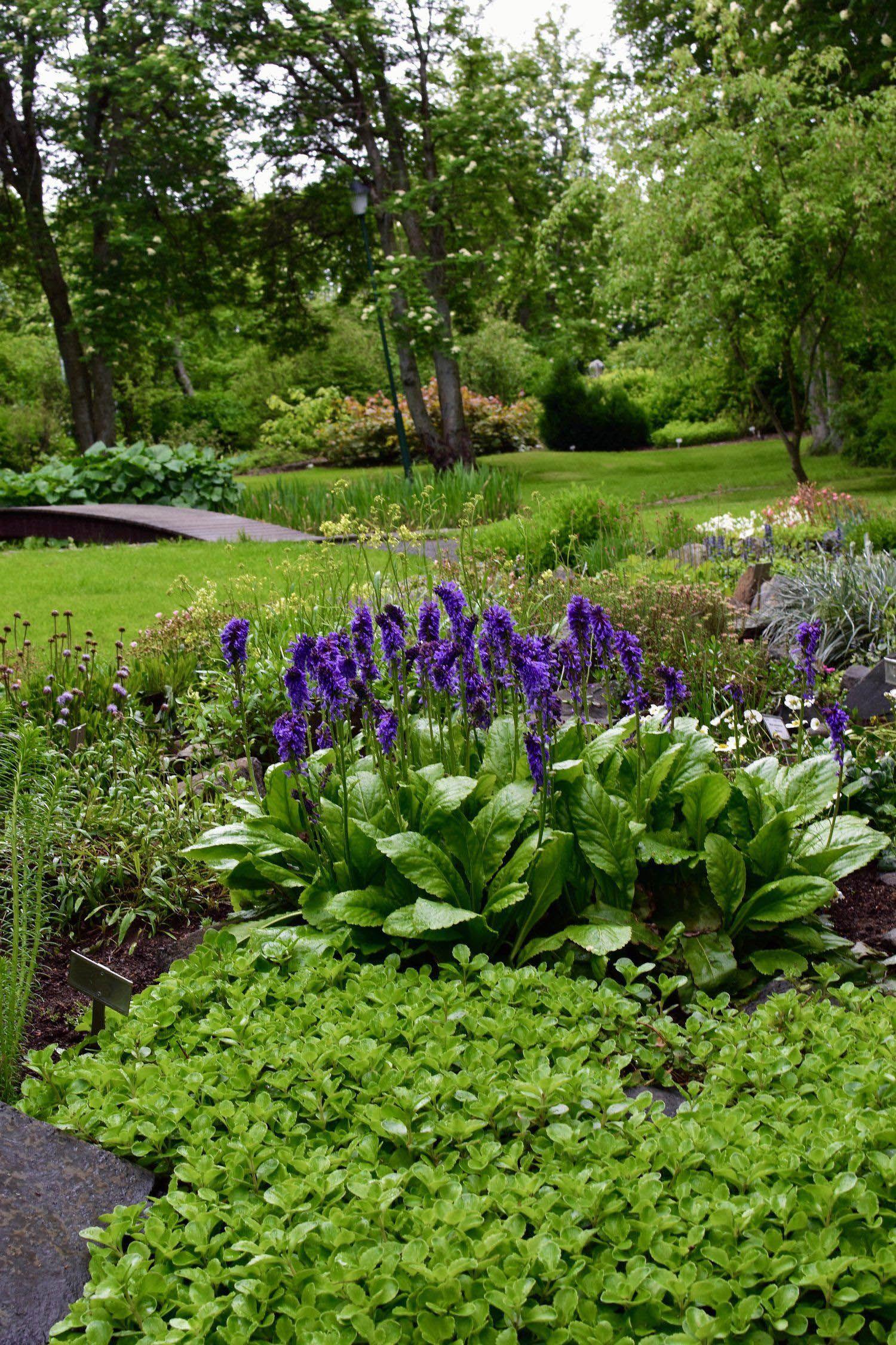Impressive 3 bhk botanical garden tips for 2019