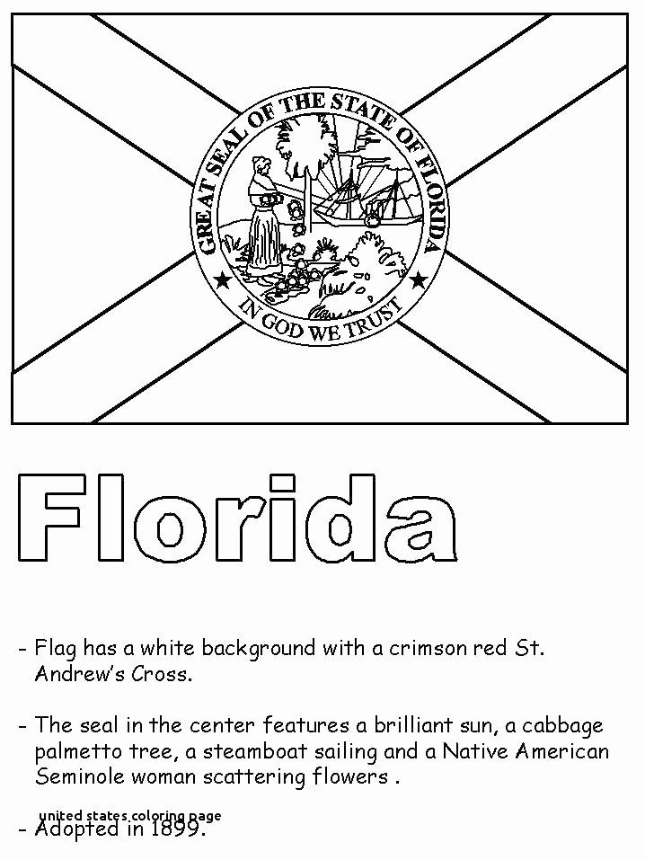 Pin By Jesica Wae On Coloring Pages Florida State Flag Florida