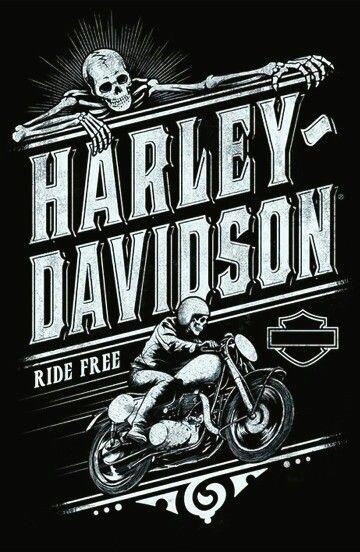 Harley Harley Harley Davidson Harley Davidson Bikes Et Harley