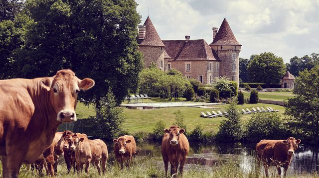 Le Domaine de l'Etang, un château cinq étoiles près d'Angoulême
