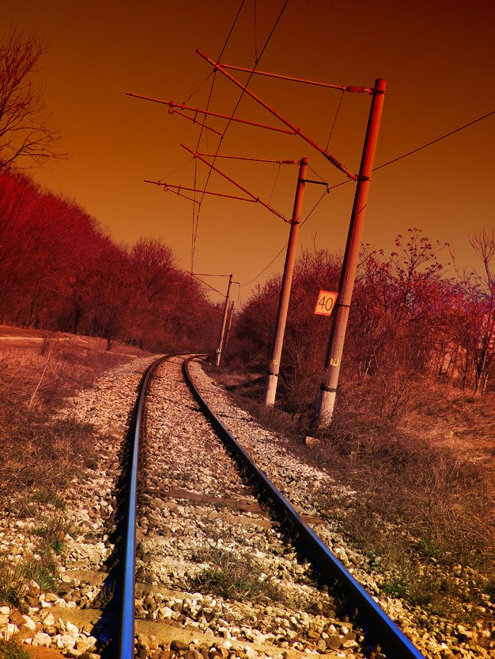 ♥♥ NICE Sepia ghosted tint!  For MY Tracks Walkin' Partner in ALL Things! ♥♥