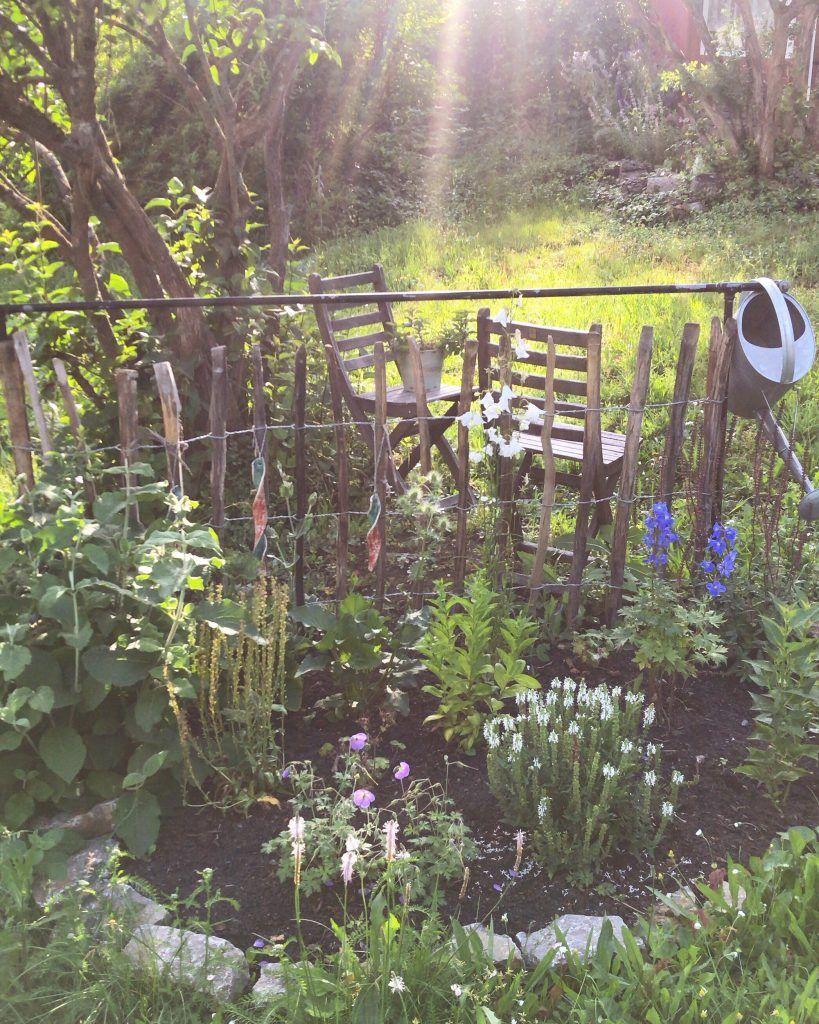 Staudenbeet anlegen - Garten Fräulein - Der Garten Blog