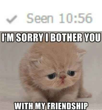 16 Times You Felt Personally Victimised By Facebook Crush Memes Funny Images Funny Meme Pictures