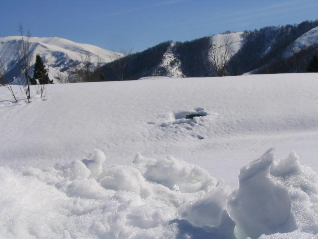 fotos de nieve buscar con google