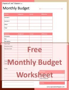 How To Use A Monthly Budget Worksheet  Monthly Budget Budgeting