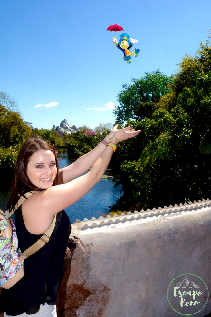 Disney World has so much to do and see! The Magic Photopass includes amazing images like this!