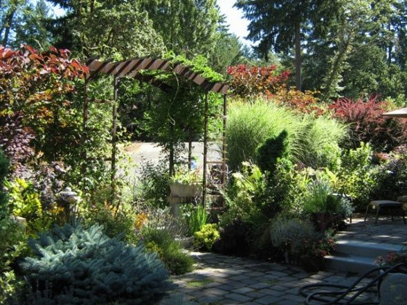 Its all about the plants, Pacific Northwest garden design for foliage color texture shape and size.  All season interest.  At its finest in ...