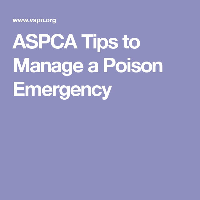 ASPCA Tips to Manage a Poison Emergency