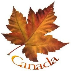 Canadian Maple Leaf Logo Picture4 Maple Leaf Images Maple Leaf Tattoo Leaf Images
