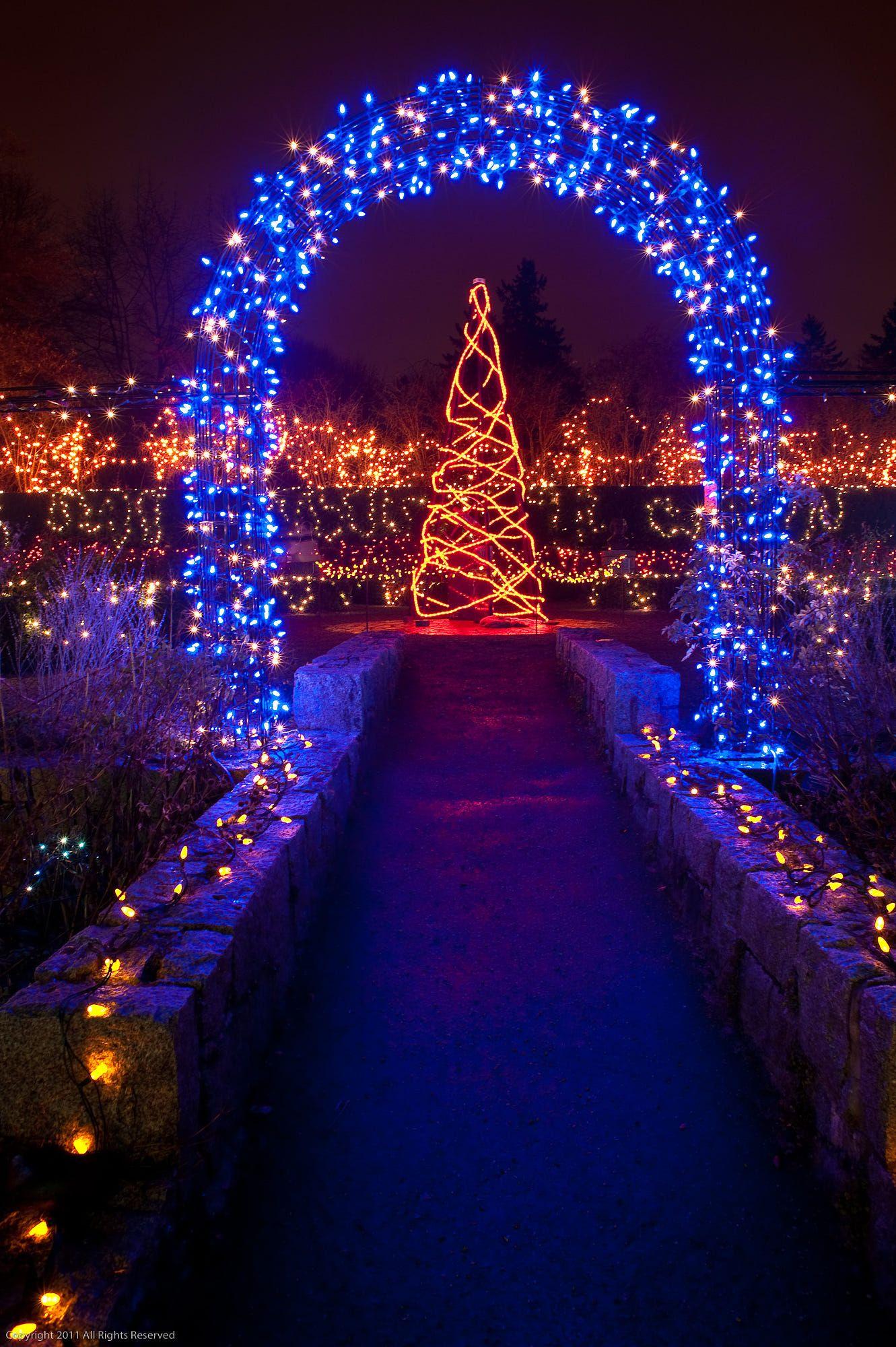 582aea09e6a5c68d8a82e6704b2c2124 - Van Dusen Botanical Gardens Christmas Lights