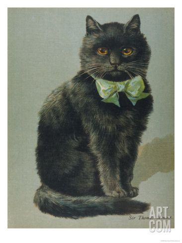 Handsome Black Cat Sir Thomas Mouser Sits Posed With A Green Ribbon Around His Neck Giclee Print Black Cat Art Cats Illustration Cat Art