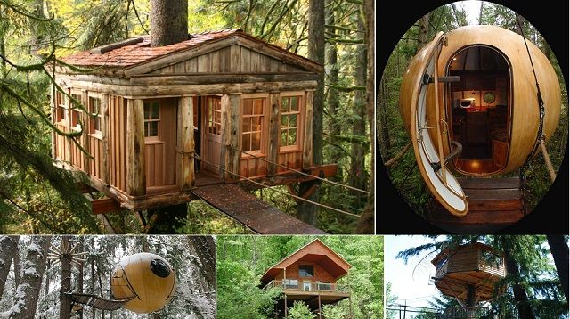 The 8 Best Treehouse Hotels In Usa Treehouse Hotel Tree House