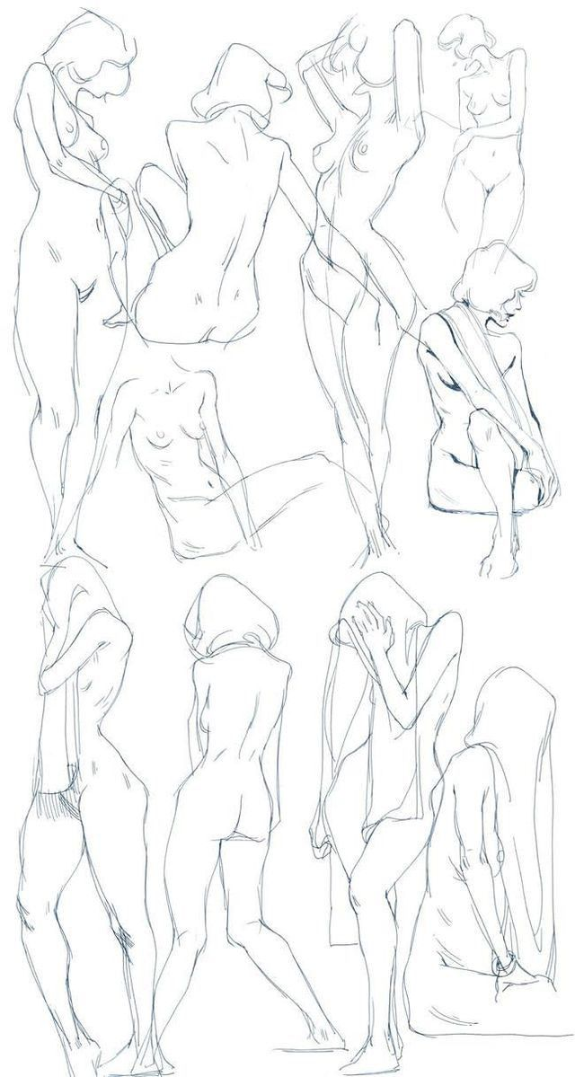 Pin by D on art | Pinterest | Anatomy, Figure drawing and Drawings