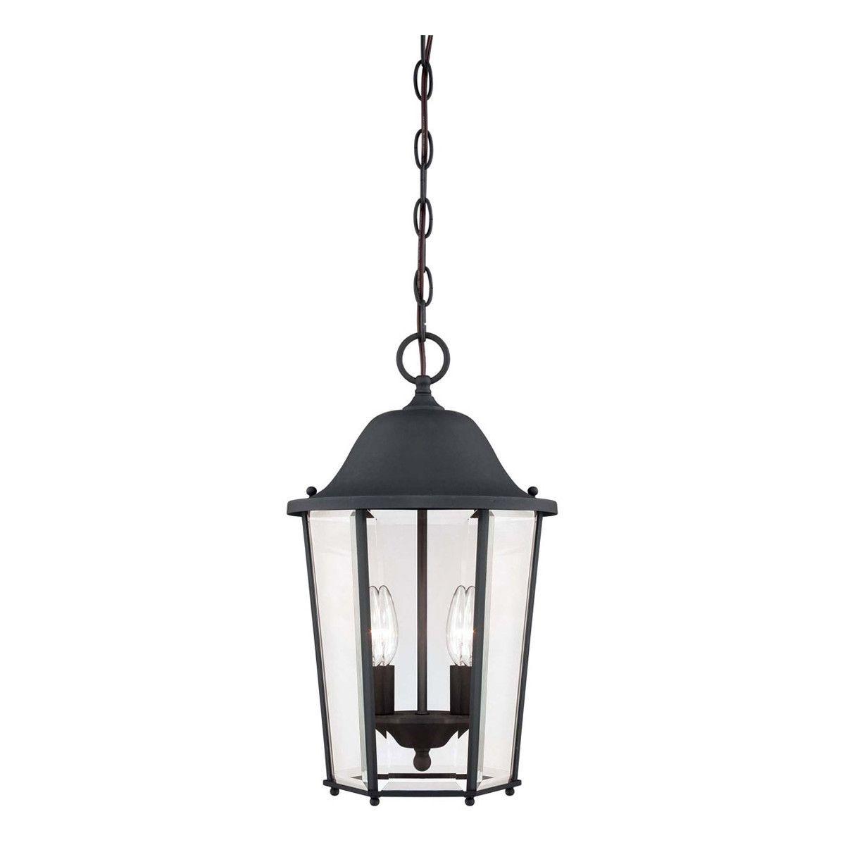 Truscott 2-Light Hanging Lantern