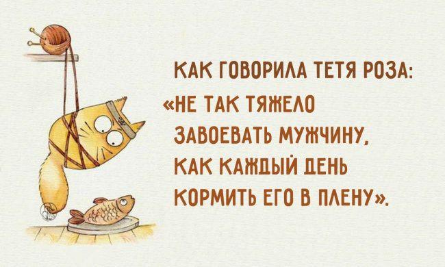 40ec45faaa4e Фото: Смешные открытки про забавные отношения между мужчиной и ...