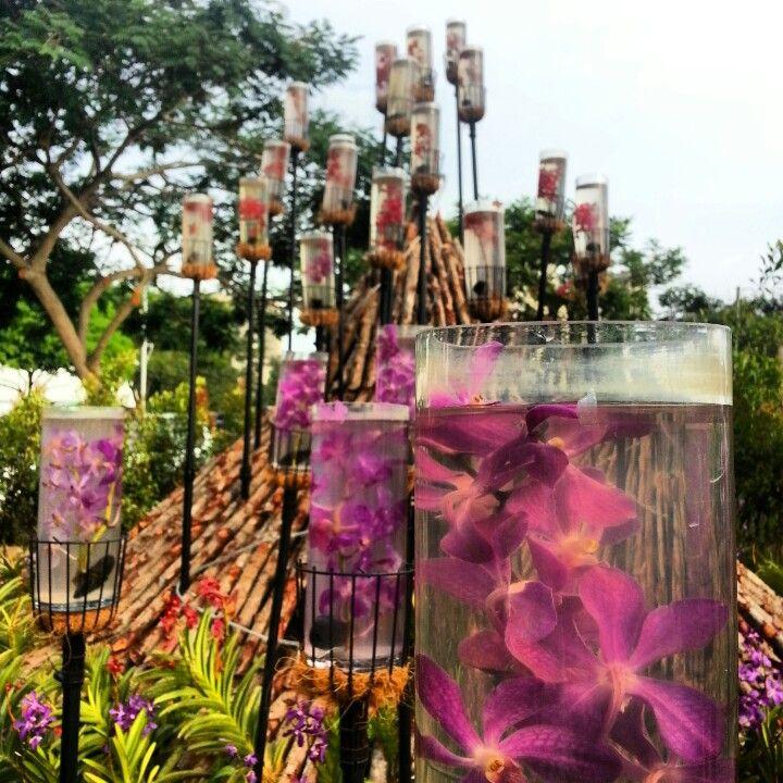 Taken at putrajaya flowers festival.