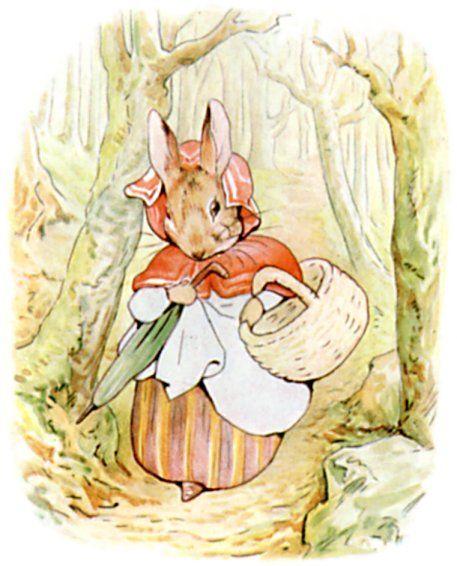 El cuento de Pedrito Conejo de Beatrix Potter  Educar Ensear