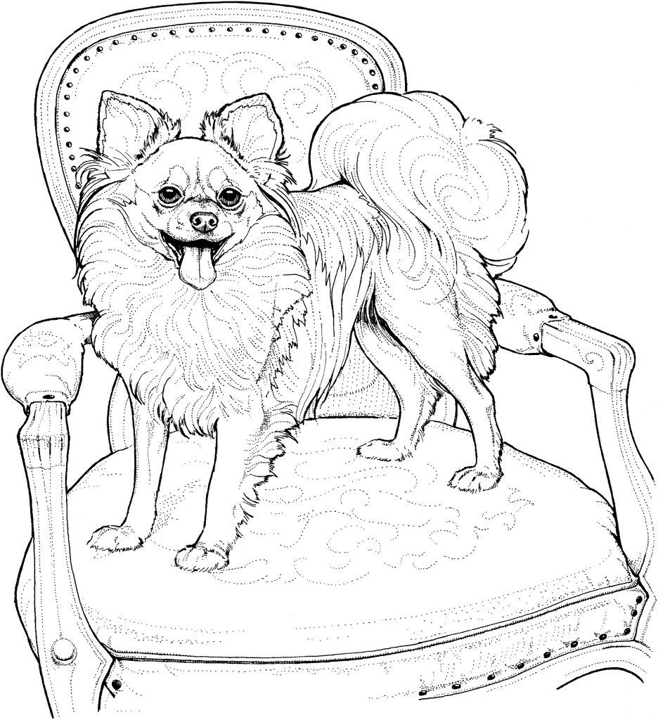 Dog Coloring Pages Free For Kids And Adults 101 Coloring Dog Coloring Page Animal Coloring Pages Puppy Coloring Pages