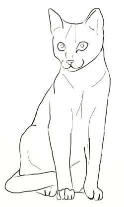 how to draw cat step 4  simple cat drawing cat drawing