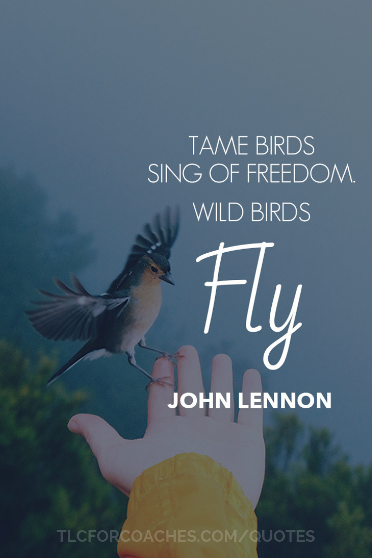 Tlc Inspirational Quotes Singing Quotes Fly Quotes Freedom Quotes Life