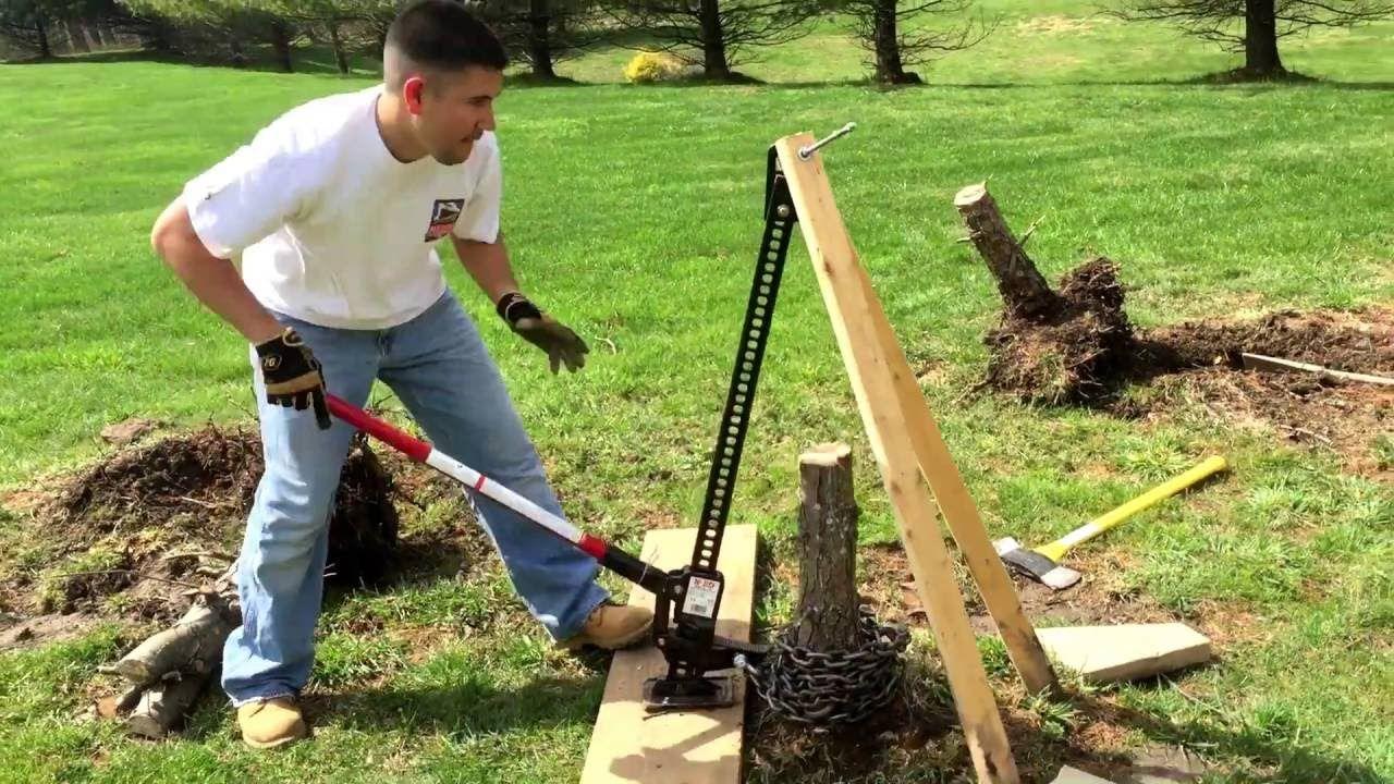Remove tree stump with hilift jack Tree stump, Removing