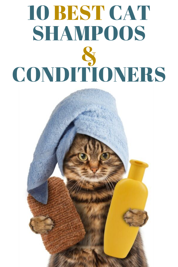10 Best Cat Shampoos And Conditioners [ 2020 ] Cat
