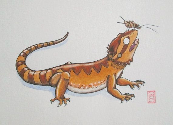 Cricket Head - Bearded Dragon Art - Original Watercolor and Ink - 4 ...
