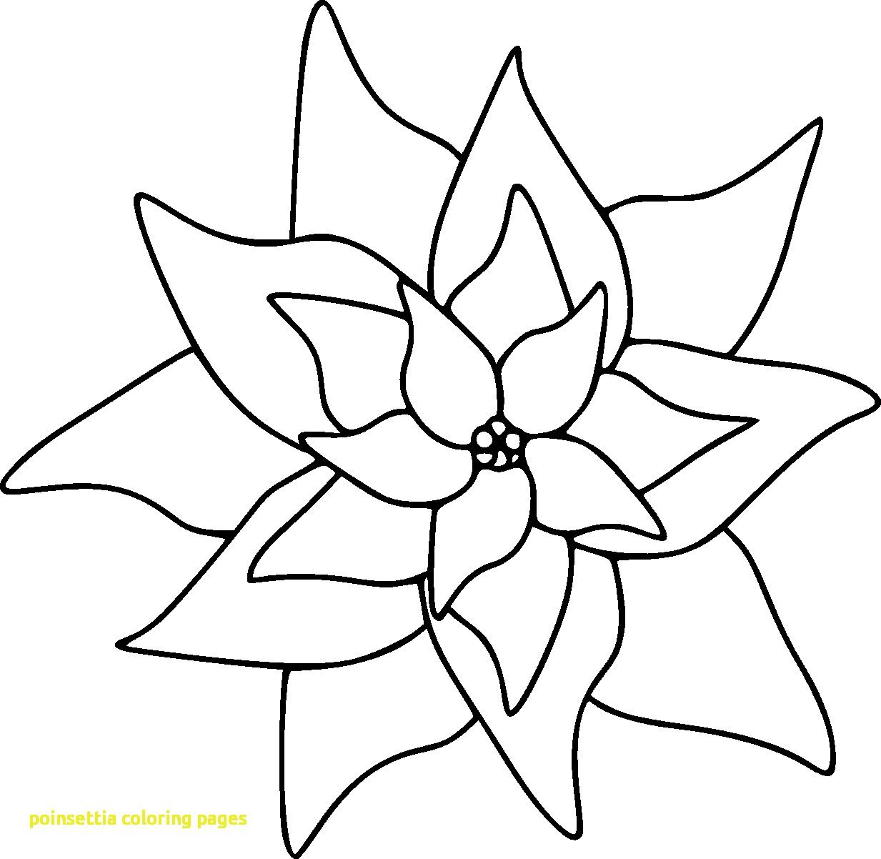 Poinsettia Coloring Pages 5 15837 Throughout Page