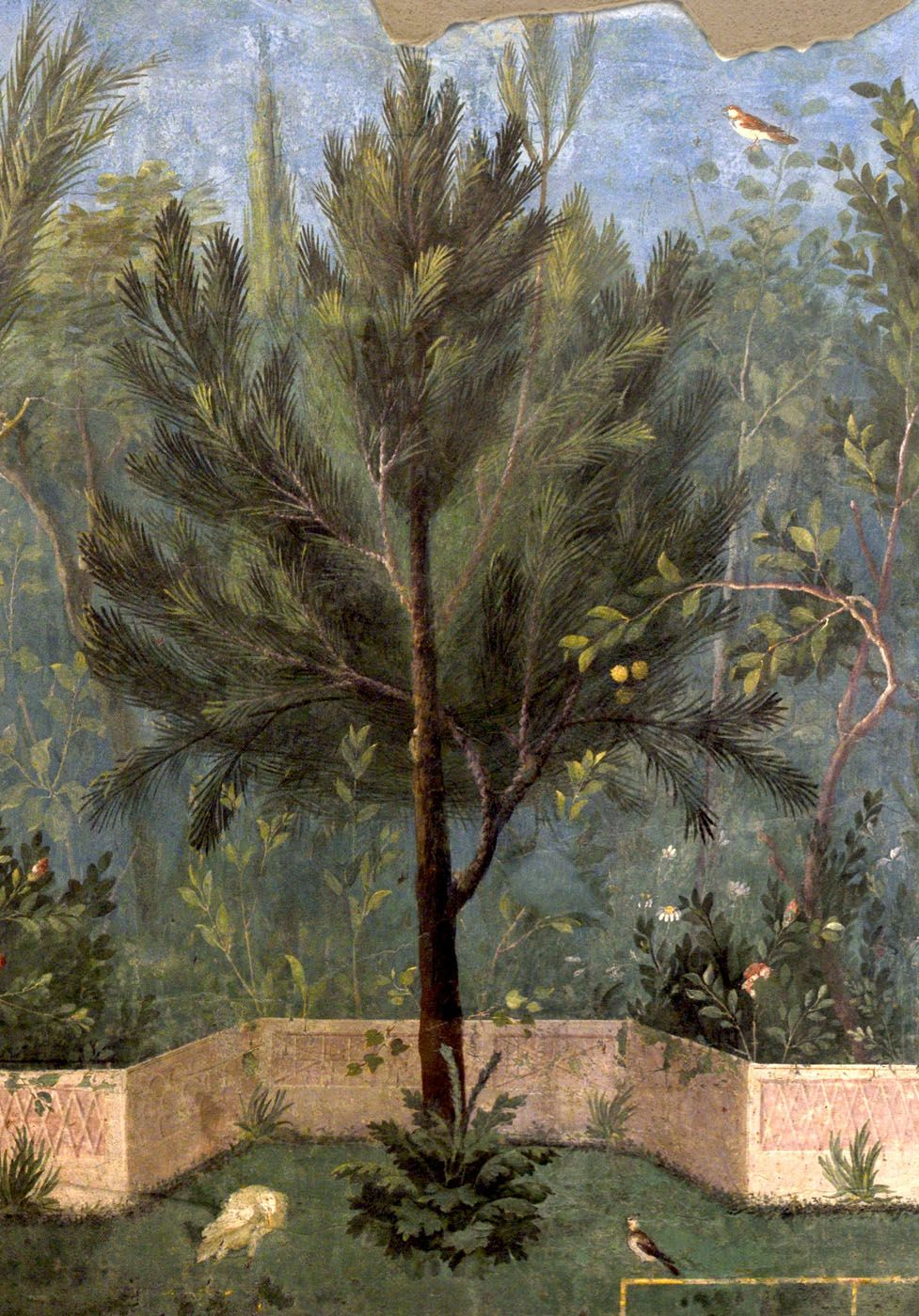fresco painting wet paint on a dry wall interesting foliage detail