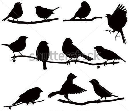 Dieses Clipart-Paket ist für: 1. Zweig und Vogel-Silhouetten. Jeder Zweig  kommt in einem grünen (Sommer) und eine blattlose Versio… | Clip art, Bird  silhouette, Art