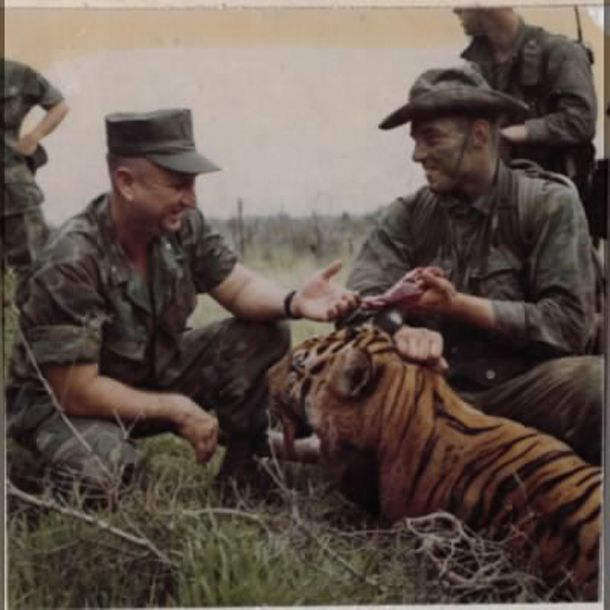 Marine Recon Team Members Examine A Wild Tiger Killed By