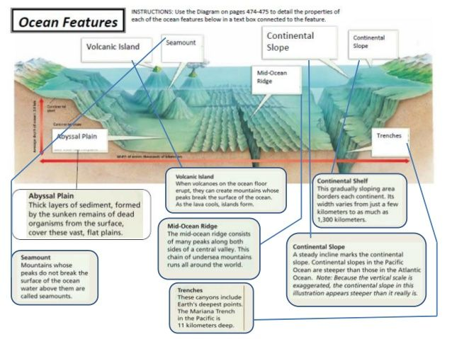 Topographical Of The Ocean Floor Diagram Auto Wiring Diagram Today