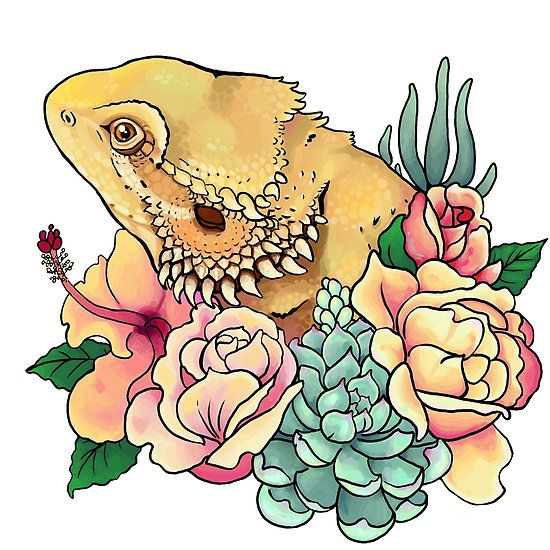 fe7ca0c14 Pastel Bearded Dragon   Tattoo   Bearded dragon cute, Bearded dragon ...