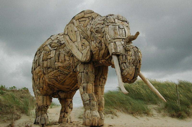 Driftwood art by Andries Botha