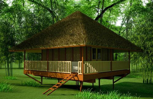 Very Simple Forest House Plans Bush Shack