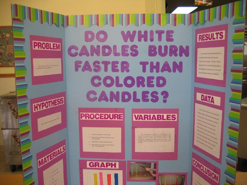 science fair project school