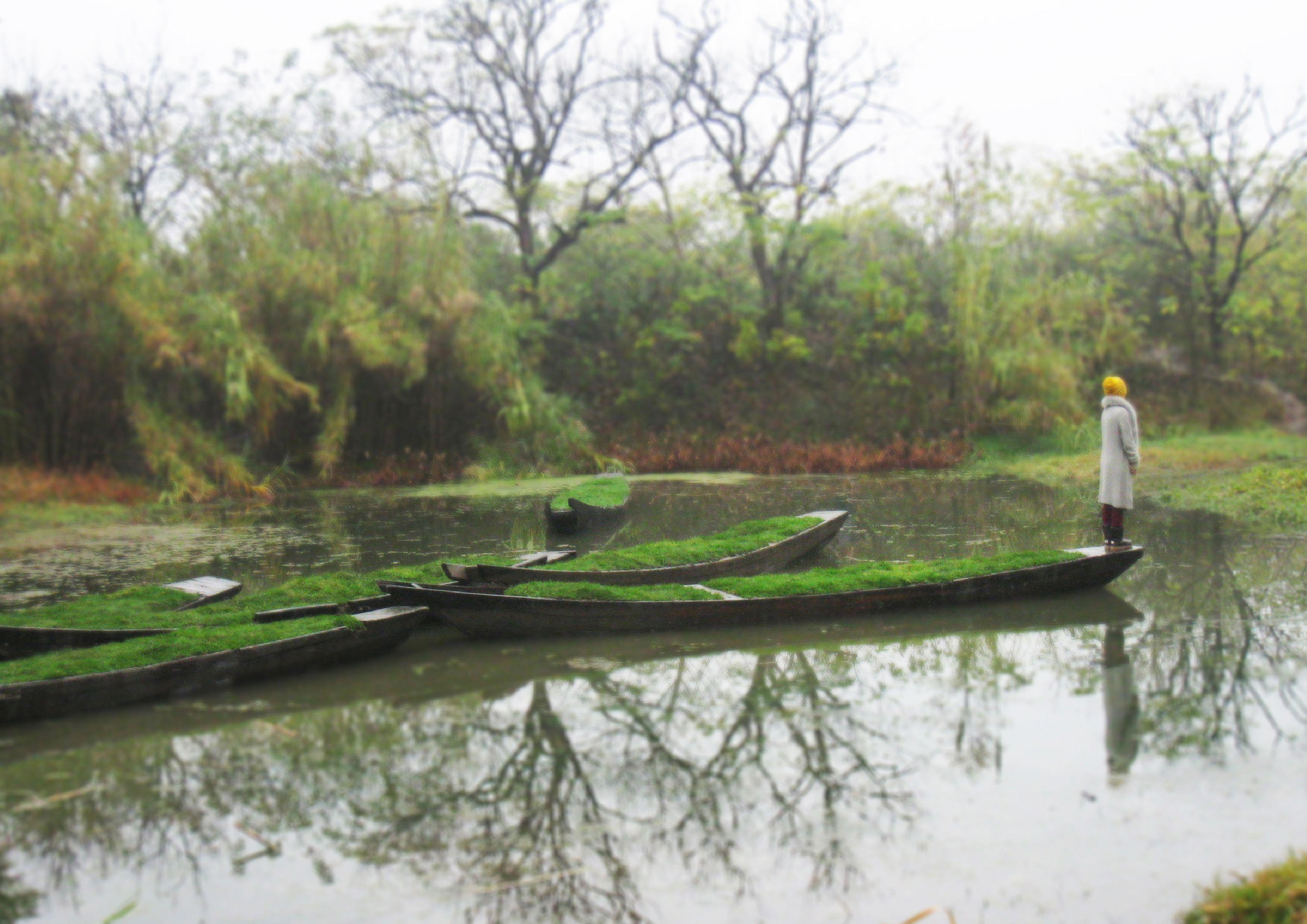 Xixi Wetland - Iskanje Google