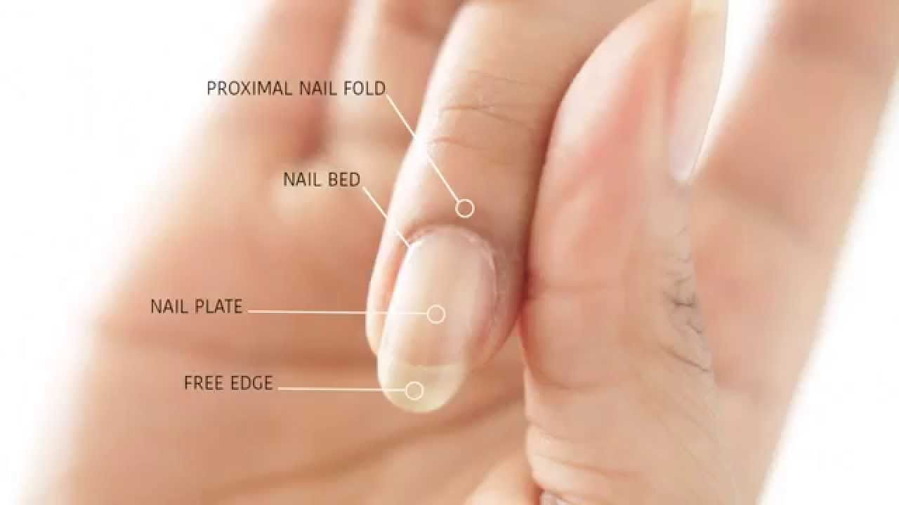 How to remove cuticles without bleeding abetweene