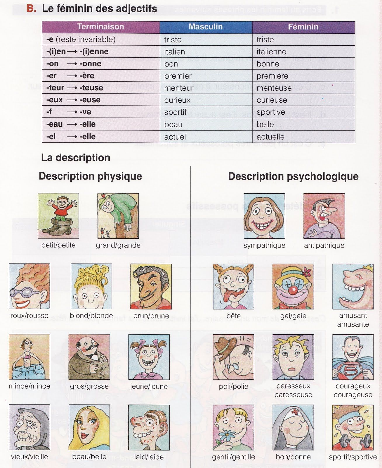 adjectifs / description physique | FLE Lexique de la ...