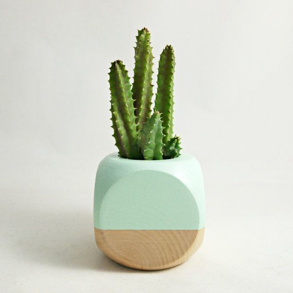 Mini geometric planter mint wood plant not included for Wooden cactus planter