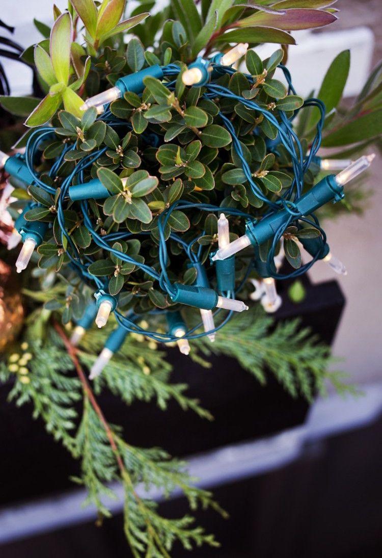 Blumenkasten Weihnachtlich Dekorieren blumenkasten weihnachtlich dekorieren buchsbaumlichterkette